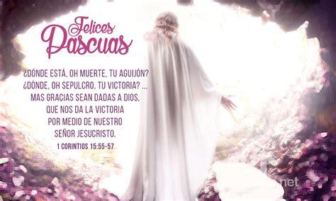 imagenes de jesus felices pascuas felices pascuas jesus ha vencido la muerte imagenes de