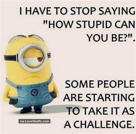 stupid challenge stupid challenge laughshop