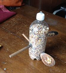 Bird Feeders Tulsa Make A Bird Feeder With Your Editor S Web