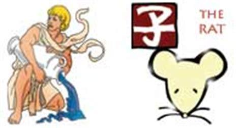 aquarius rat horoscope zodiac sign aquarius personality