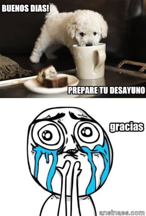 Buenos Memes En Espaã Ol - 43 best images about memes on pinterest latinas amigos