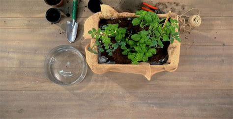 orto in cassetta come fare un orto in cassetta fai da te per terrazzo o