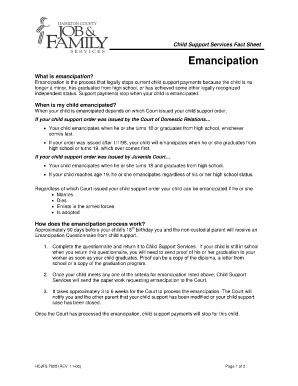 Volusia County Clerk Of Courts Search Emancipation Form Volusia County Fill Printable Fillable Blank Pdffiller