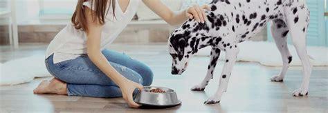 alimenti animali agri pet alimenti cani gatti e piccoli animali