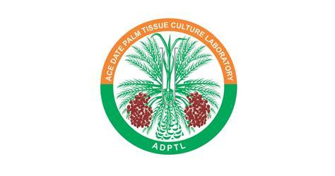 design logo india illustration logo design hyderabad illustation logos
