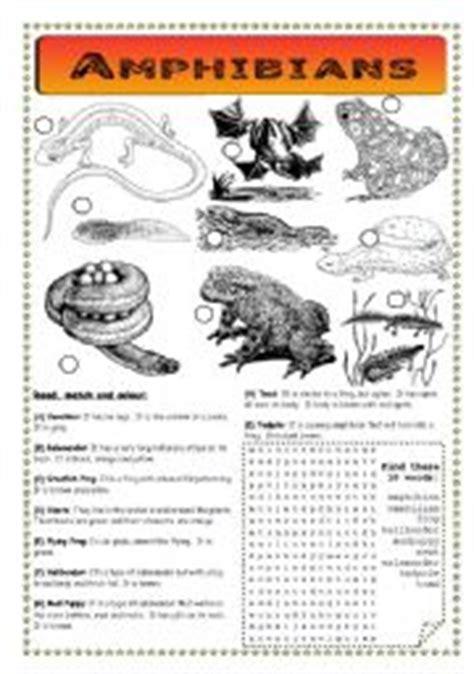 Hibians Worksheet by Worksheet Hibians Pond