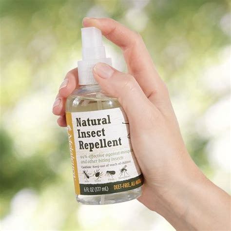 natural mosquito repellents 209 best melaleuca images on pinterest melaluca products
