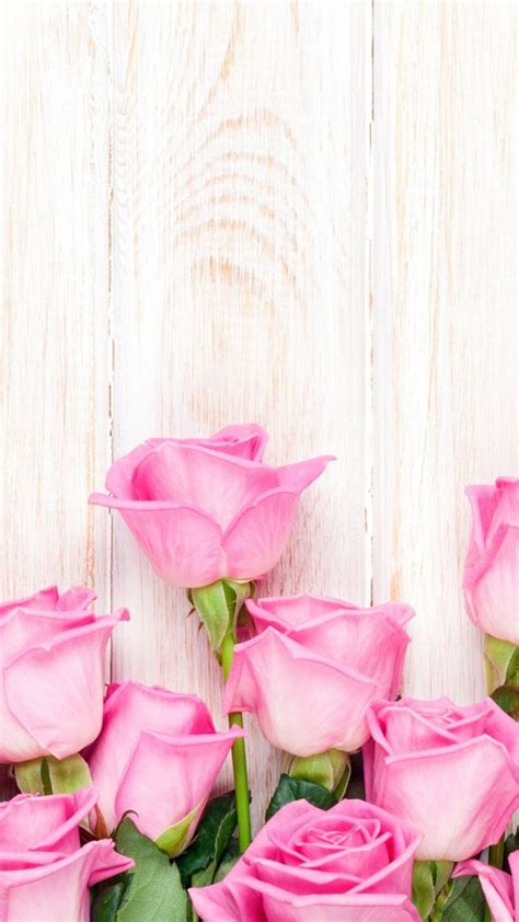 imagenes para fondos de pantalla flores fondos de pantalla wallpapers hd 187 im 225 genes fondo de