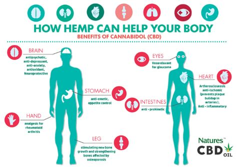 Can I Still Tke Cbd While Detoxing by Health Benefits Of Cbd Natures Cbd