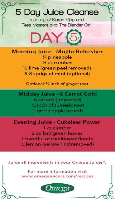 Juice With Drew 5 Day Detox by Best 25 5 Day Juice Cleanse Ideas On 7 Day