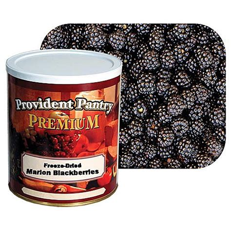 provident pantry 174 freeze dried marion blackberries 10 oz