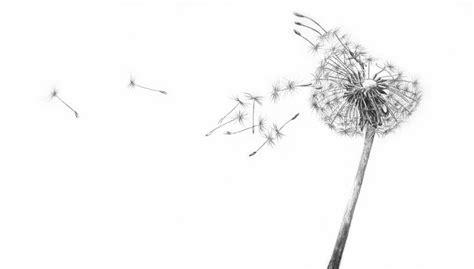 blowing dandelions letters for santa dandelion illustration inspiration pinterest paper