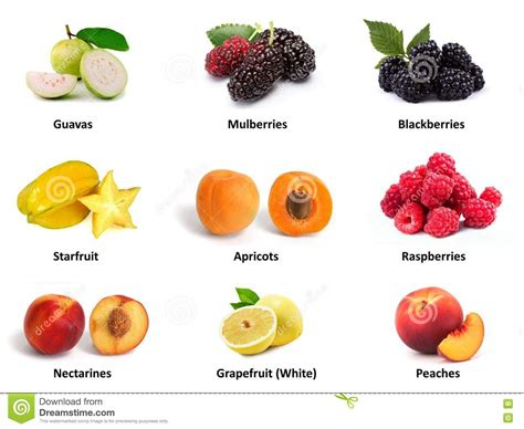 fruit high in protein set of high protein fruits stock illustration