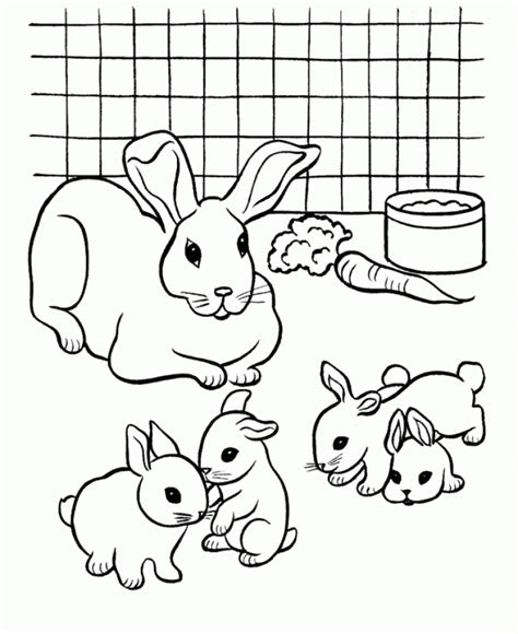 coloring pages free to color get this cute bunny coloring pages free to print 84061