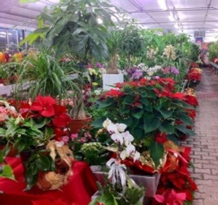 giardini toscani azienda agricola giardini toscani
