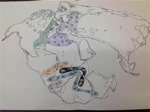 plate tectonics ms ash science website