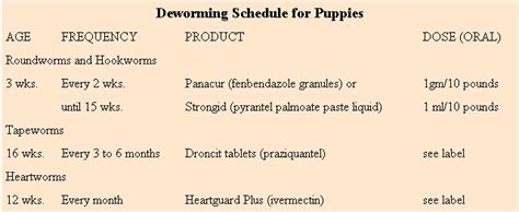 puppies and worming schedule caring for the homestead working homesteading and livestock earth news