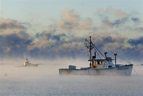 sea smoke the beauty of sea smoke the portland press herald