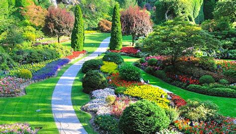 creative of landscape and design landscape design