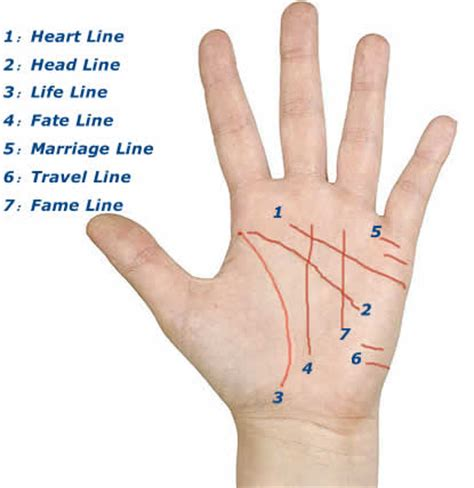 palm reading basic principles and astrology marriage get my true back