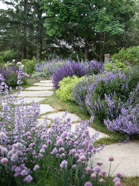 landscape lavender home design ideas pictures remodel
