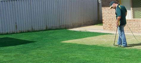 spray painting grass green grass painting western australia in perth wa landscaping
