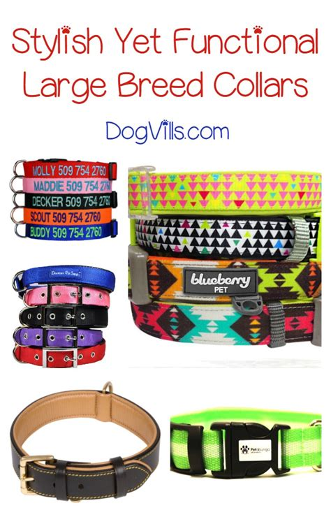 large breed collars best large breed collars for your