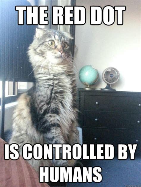 Sudden Realization Meme - sudden realization cat memes quickmeme
