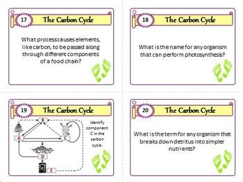 The Carbon Cycle Task Cards With Editable Template By Tangstar Science Task Card Template 2