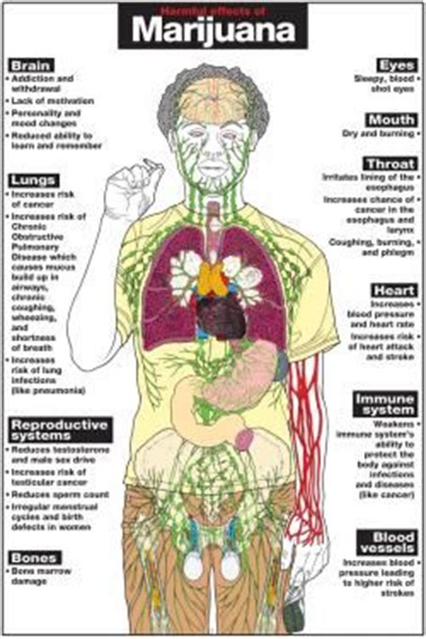 One Week Marijuana Detox Centers by 75 Best And Education Images On