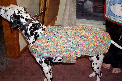 crochet pattern for xxl dog sweater crochet a spring sweater for your dog free patterns