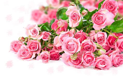 colorful roses wallpaper in romantic roses flower bouquet wallpapers wallpaper cave