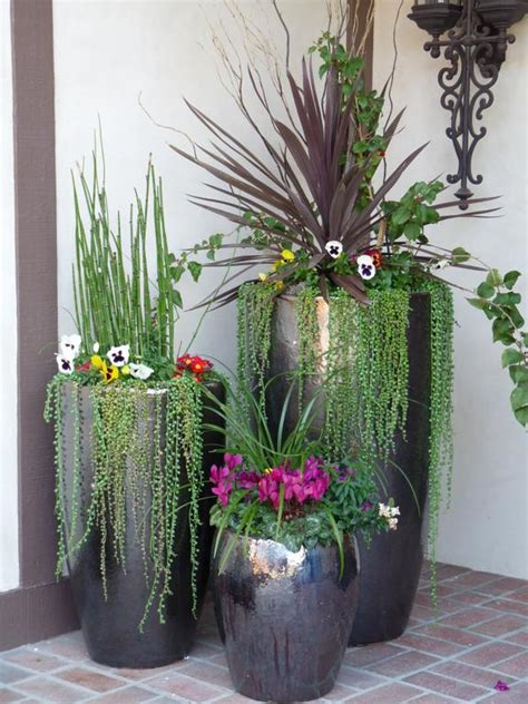Front Door Potted Plants Nest Outdoor Potted Plants