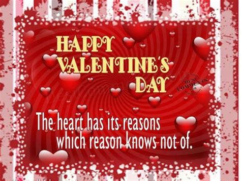 reason for valentines day happy s day the has its reasons which