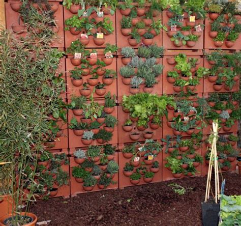 come fare un orto sul terrazzo come fare un orto sul terrazzo anche se si vive in