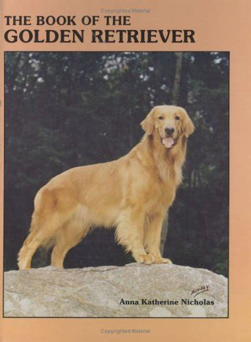 caring for golden retriever golden retriever care of coat dogs in our photo
