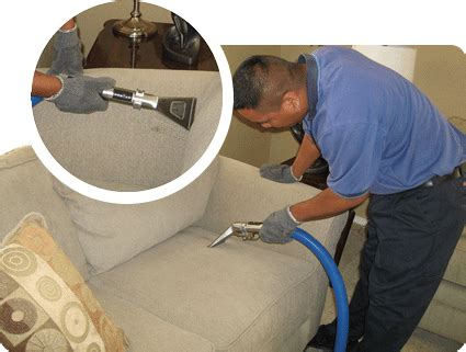 upholstery cleaning thoroclean