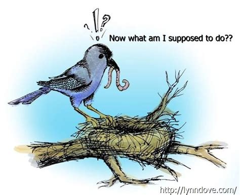 perimenopause everydayclimb s blog when empty nest syndrome goes beyond normal