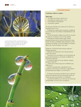 ciencias naturales 6to grado by sbasica issuu ciencias naturales 6to grado by rar 225 muri issuu