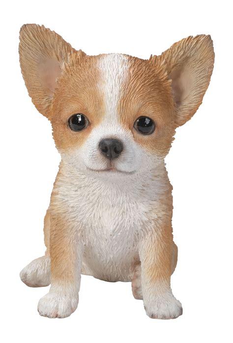 Vivid Pet Pals Brown & White Chihuahua Lifelike Resin