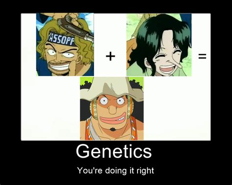 Meme One Piece - one piece usopp heredity meme by bakeneko14 on deviantart