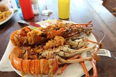 lobster boat seafood on the water seaside terrace caribbean lobster local dive seafood