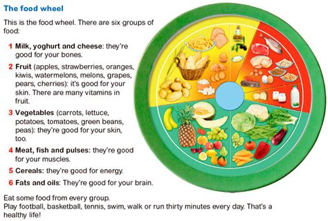 food wheel template wheel of food groups food ideas