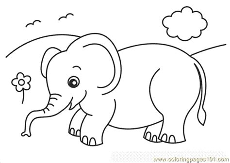 coloring pages of cartoon elephants elephant coloring pages coloring page free elephant
