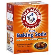 does baking soda kill bed bugs 17 best ideas about killing bed bugs on pinterest what
