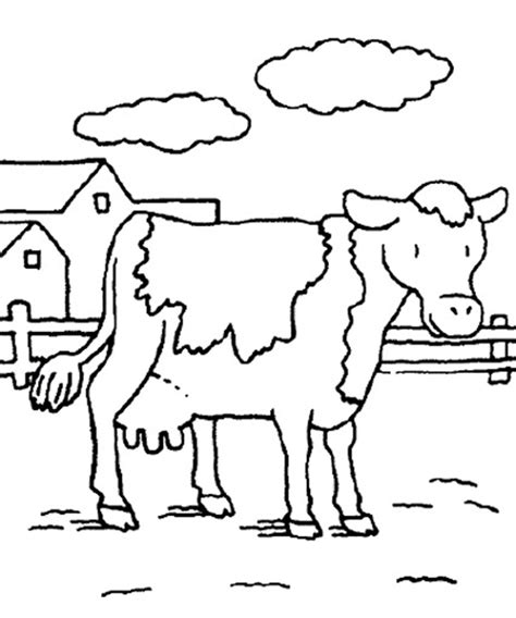 Cow Coloring Pages Dairy Cow Coloringstar Colouring In Sheets Farm Animals