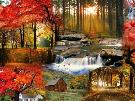 imagenes de paisajes otoño invierno 77 fotos y fondos fotos de invierno paisajes