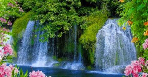 beautiful waterfalls with flowers beautiful waterfalls with flowers search scenic