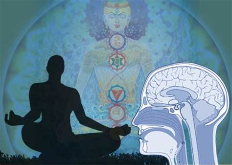 the of biblical meditation counseling your mind through the scriptures books meditation can reshape your brain the galactic