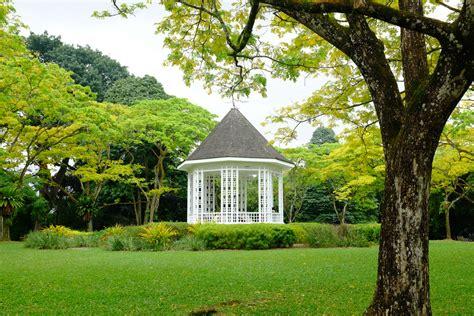 things to do in botanic gardens singapore singapore botanic gardens in singapore attraction in